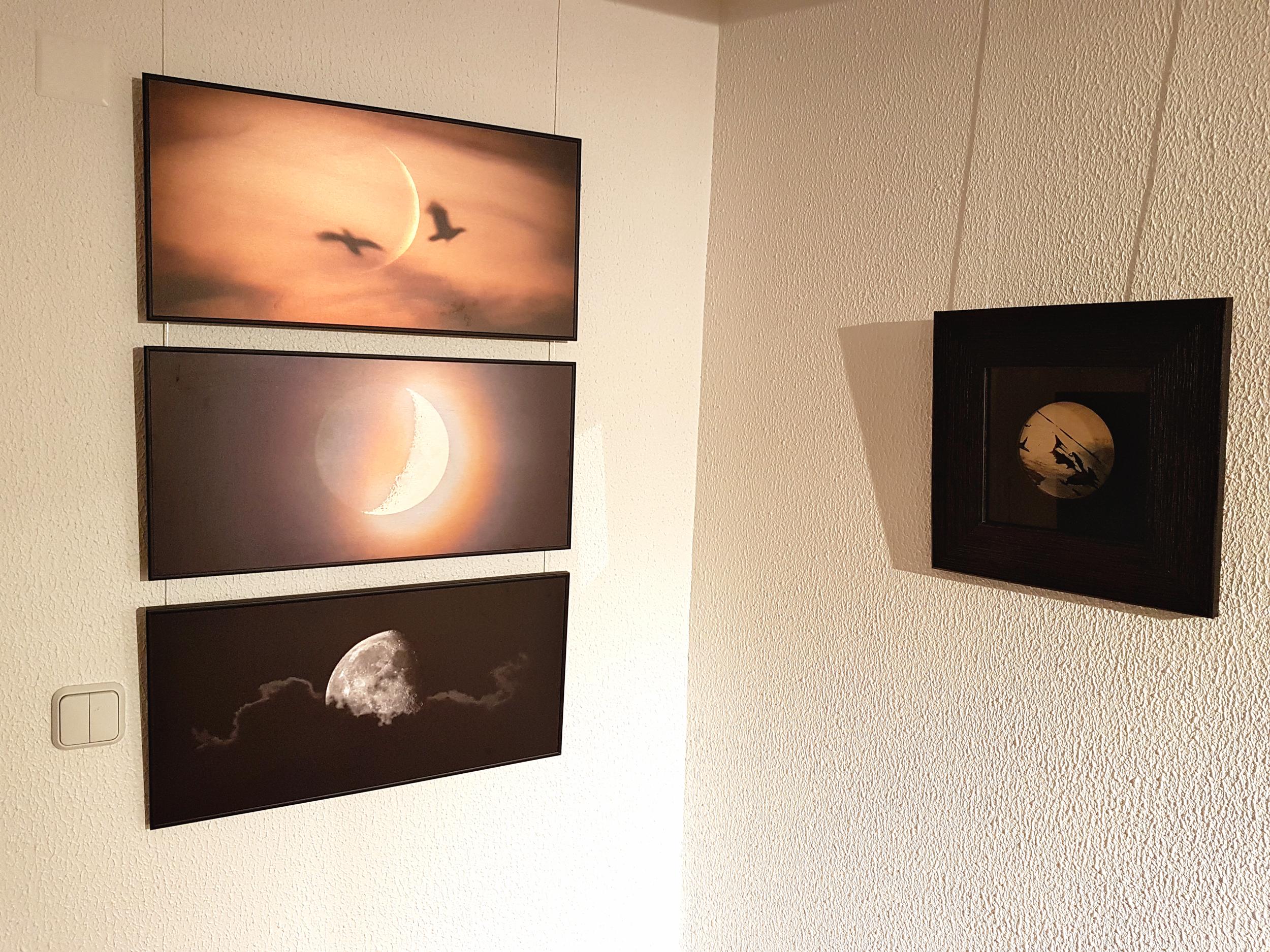 Haus Galerii 14