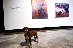 Solaris-galerii-Lola-Liivat-5